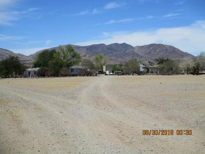 Lucerne Valley Single Family Home For Sale: 17420 Meridian Road
