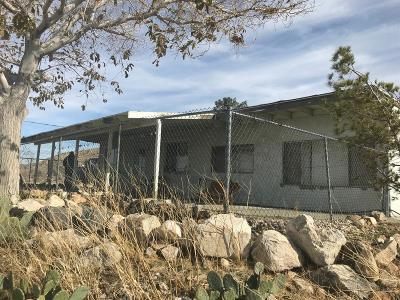 Apple Valley Single Family Home For Sale: 20882 Riverside Road