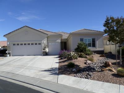 Apple Valley Single Family Home For Sale: 11111 Desota Court
