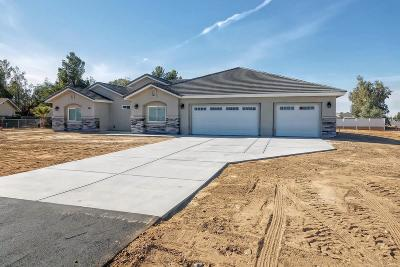 Apple Valley Single Family Home For Sale: 11390 Chimayo Lane