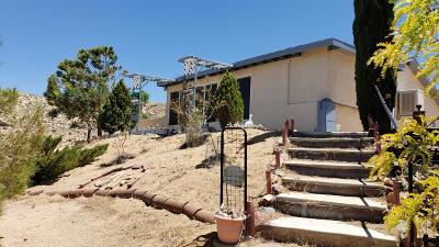 Apple Valley Single Family Home For Sale: 8687 Milpas Drive