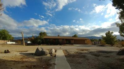 Lucerne Valley Single Family Home For Sale: 32855 Zircon Road