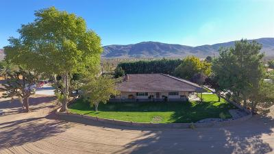 Apple Valley Single Family Home For Sale: 16601 Redwing Road