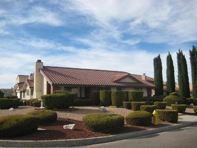 Victorville Single Family Home For Sale: 12590 Rain Shadow Road