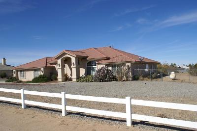Victorville Single Family Home For Sale: 9350 Mesa Street