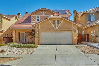 Hesperia Single Family Home For Sale: 9235 Canyon View Avenue