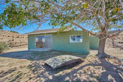 Apple Valley Single Family Home For Sale: 9762 Pioneer Road