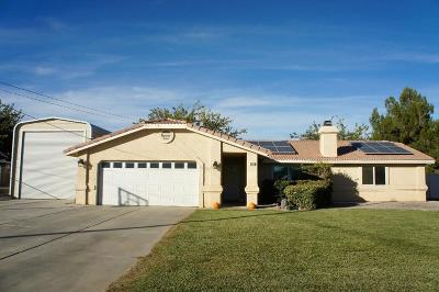 Hesperia Single Family Home For Sale: 18162 Yucca Street