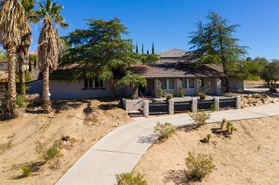 Apple Valley Single Family Home For Sale: 20004 Sonoma Road