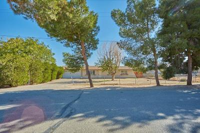 Victorville Single Family Home For Sale: 15895 Cazadero Road