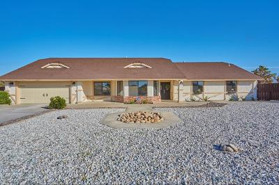 Apple Valley Single Family Home For Sale: 13551 Quapaw Court