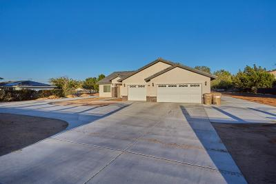 Hesperia Single Family Home For Sale: 7665 Newhall Avenue
