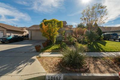 Adelanto Single Family Home For Sale: 10667 Alton Place