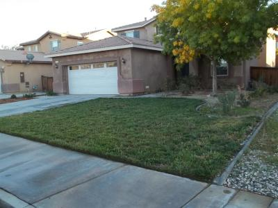 Adelanto Single Family Home For Sale: 11763 Justine Way #92301