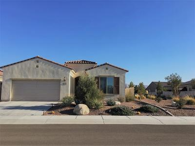 Apple Valley Single Family Home For Sale: 19143 Tiempo Street