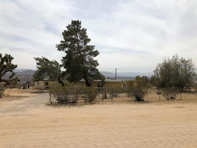 Apple Valley Single Family Home For Sale: 24407 Shoshone Road