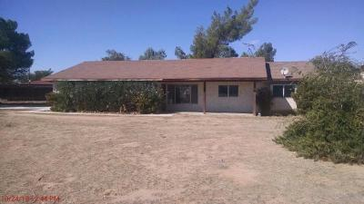 Apple Valley Single Family Home For Sale: 12912 Chief Joseph Road