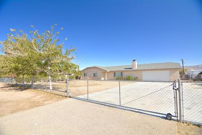 Apple Valley Single Family Home For Sale: 14559 Temecula Road