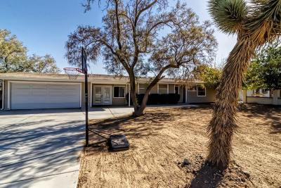 Apple Valley Single Family Home For Sale: 13143 Topsanna Road