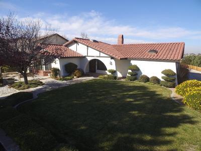 Hesperia Single Family Home For Sale: 18580 Yuba Street