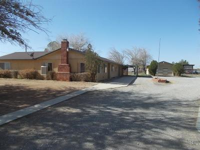 Apple Valley Single Family Home For Sale: 13828 Natoma Road