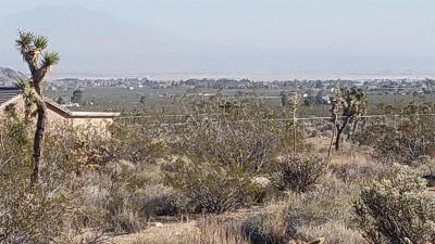 Lucerne Valley Residential Lots & Land For Sale: Shantung Road