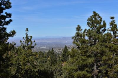 Wrightwood Residential Lots & Land For Sale: 5225 Lone Pine Cyn, Road