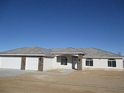 Hesperia Single Family Home For Sale: 16138 Palm Street