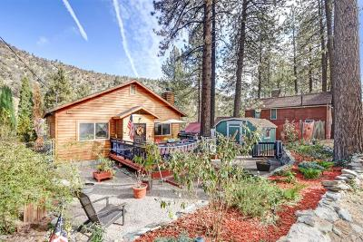 Wrightwood Single Family Home For Sale: 1654 Ross Street #92397