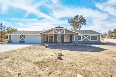 Apple Valley Single Family Home For Sale: 19275 Yanan Road
