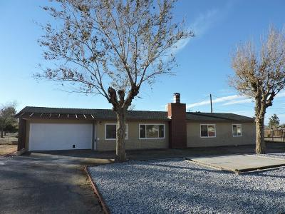 Apple Valley Single Family Home For Sale: 13974 Quinnault Road