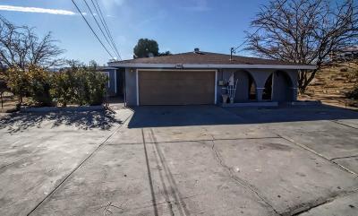 Hesperia Single Family Home For Sale: 11015 E Avenue