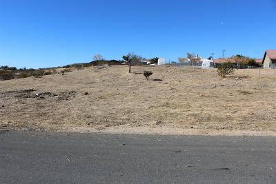 Hesperia Residential Lots & Land For Sale: Carrissa Avenue