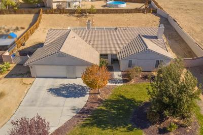 Apple Valley Single Family Home For Sale: 13215 Ivanpah Road