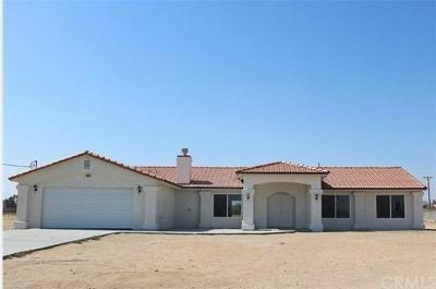 Hesperia Single Family Home For Sale: 15861 Willow Street