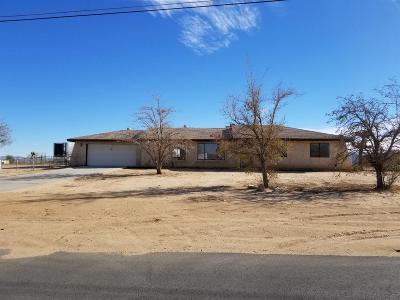 Hesperia Single Family Home For Sale: 10711 9th Avenue