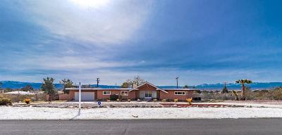 Apple Valley Single Family Home For Sale: 18909 Kaibab Road