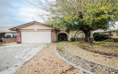 Victorville Single Family Home For Sale: 13000 Bermuda Dunes Road