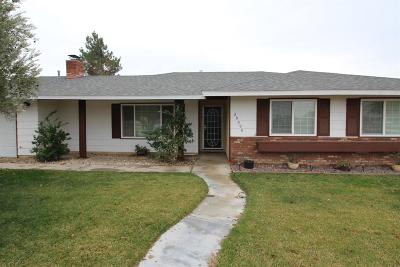 Apple Valley Single Family Home For Sale: 20999 Sandia Road