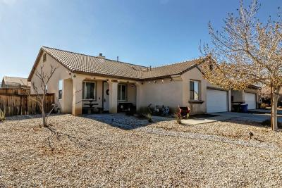Victorville Single Family Home For Sale: 10277 Big Chief Street