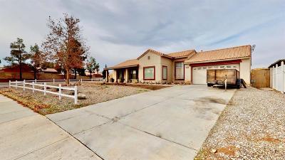 Victorville Single Family Home For Sale: 12910 Lantern Lane
