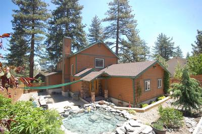Wrightwood Single Family Home For Sale: 5335 Lone Pine Canyon Road