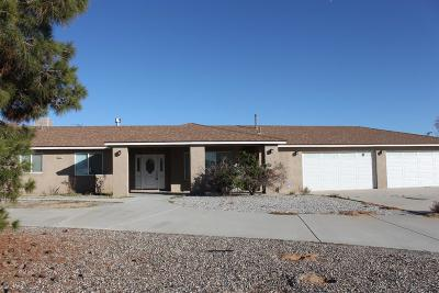Apple Valley Single Family Home For Sale: 16695 Century Plant Road