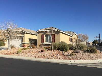 Apple Valley Single Family Home For Sale: 10411 Wilmington Lane