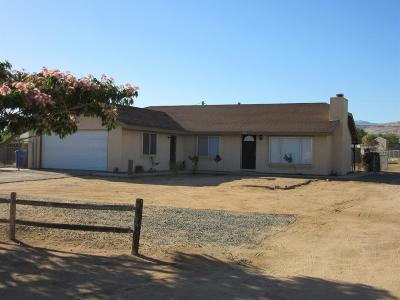 Apple Valley Single Family Home For Sale: 21985 Panoche Road