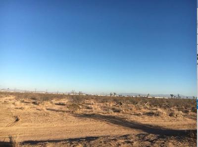 Adelanto Commercial Lots & Land For Sale: El Privilegio Road