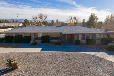Apple Valley Single Family Home For Sale: 19135 Seneca Road