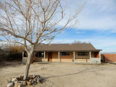 Barstow Single Family Home For Sale: 25266 Agate Road