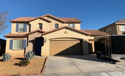 Victorville Single Family Home For Sale: 14781 Coachman Road