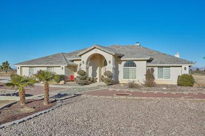 Victorville Single Family Home For Sale: 11126 Goss Road